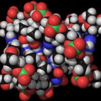 CPK, ecco l'enzima da tenere sotto controllo
