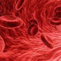 Test del sangue per i livelli di TSH