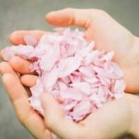 Come e perché è importante prendersi cura delle mani screpolate in inverno